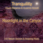 moonlight in the canyon